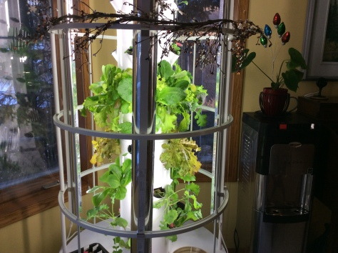 tower garden dec 2017